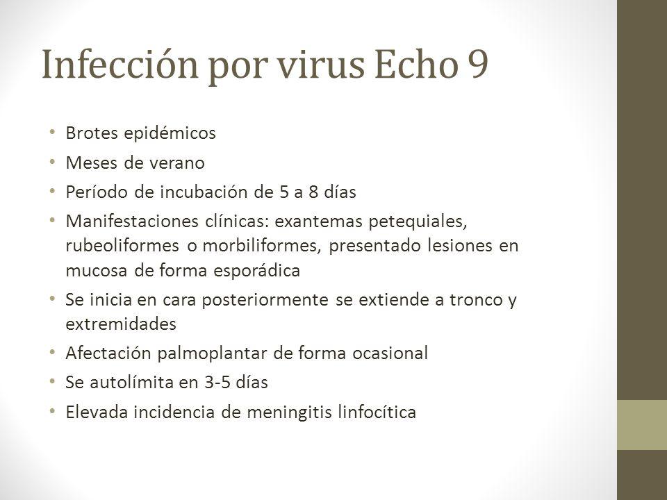 Infección por virus Echo 9