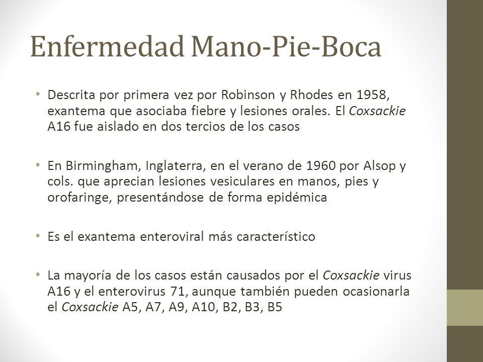 Enfermedad Mano-Pie-Boca