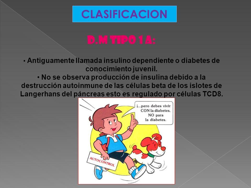 CLASIFICACION D.M Tipo 1 a: