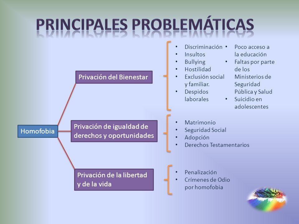 Principales Problemáticas