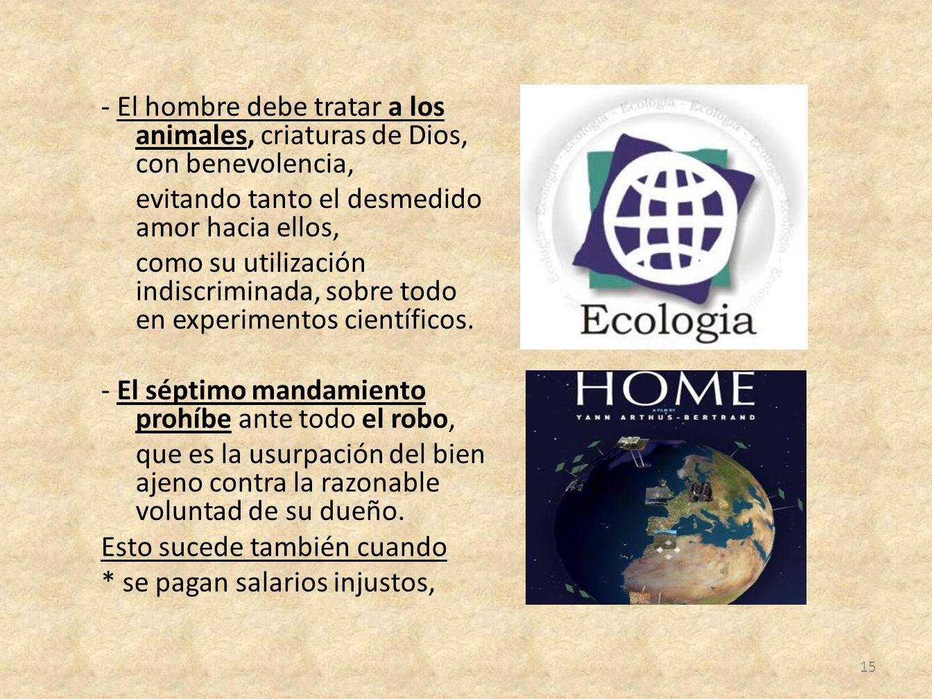 - El hombre debe tratar a los animales, criaturas de Dios, con benevolencia, evitando tanto el desmedido amor hacia ellos, como su utilización indiscriminada, sobre todo en experimentos científicos.