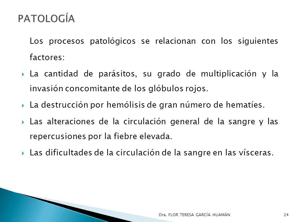 Los procesos patológicos se relacionan con los siguientes factores: