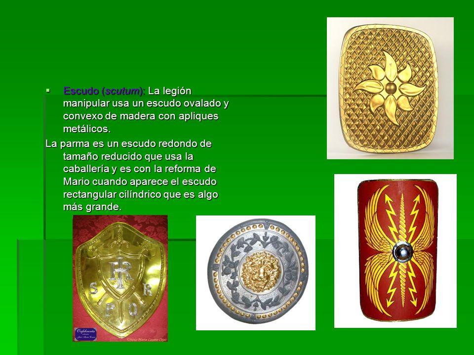 Escudo (scutum): La legión manipular usa un escudo ovalado y convexo de madera con apliques metálicos.