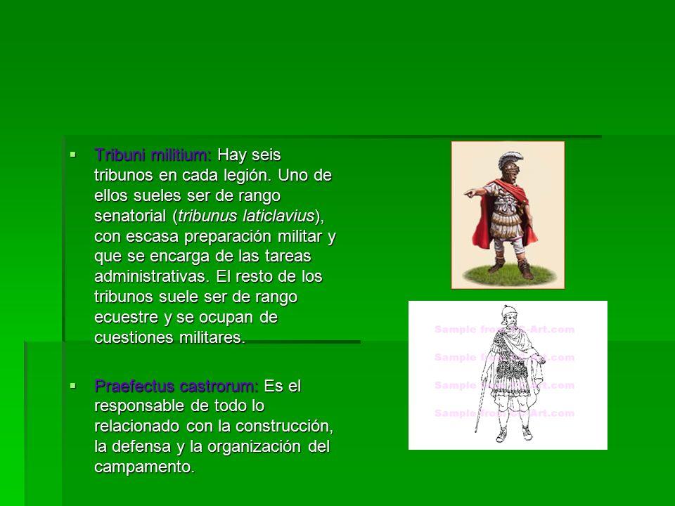 Tribuni militium: Hay seis tribunos en cada legión