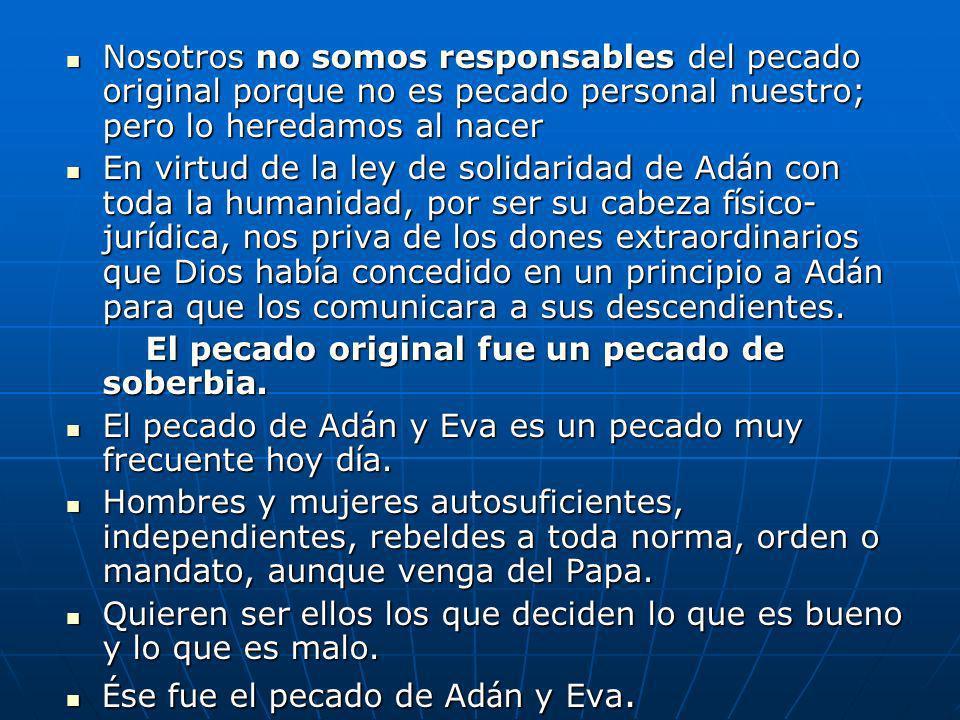 Nosotros no somos responsables del pecado original porque no es pecado personal nuestro; pero lo heredamos al nacer