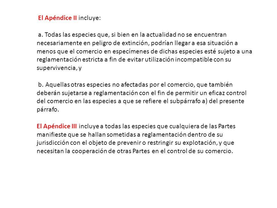El Apéndice II incluye: