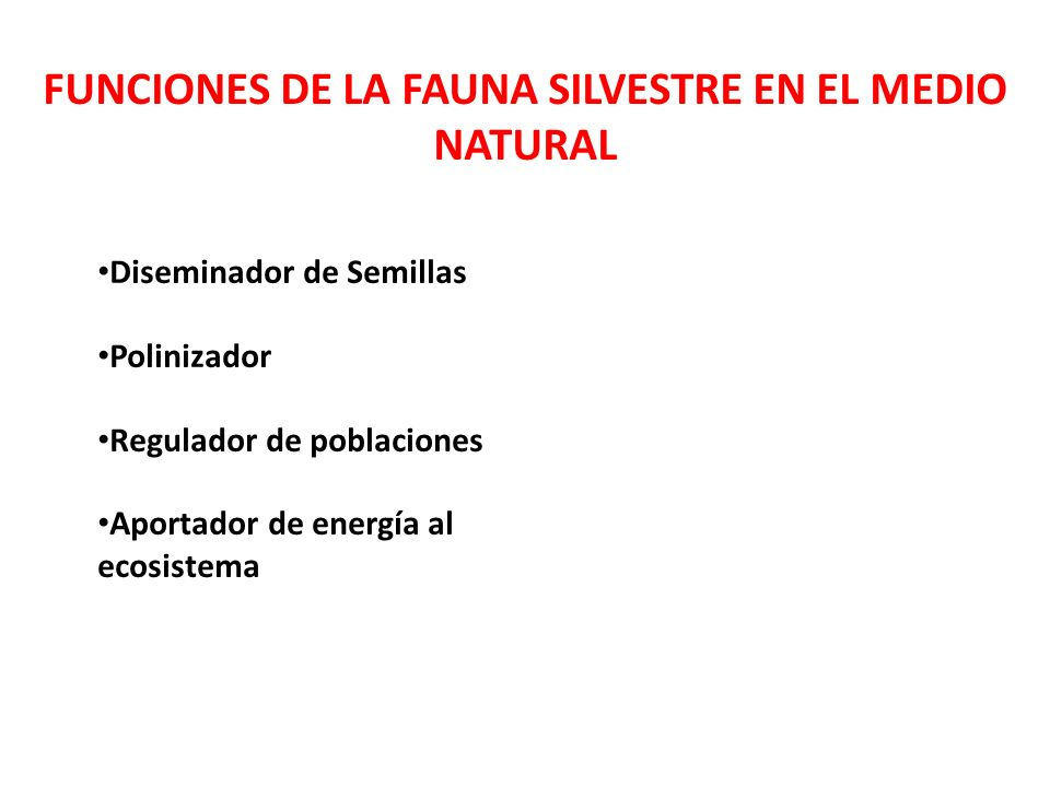 FUNCIONES DE LA FAUNA SILVESTRE EN EL MEDIO NATURAL