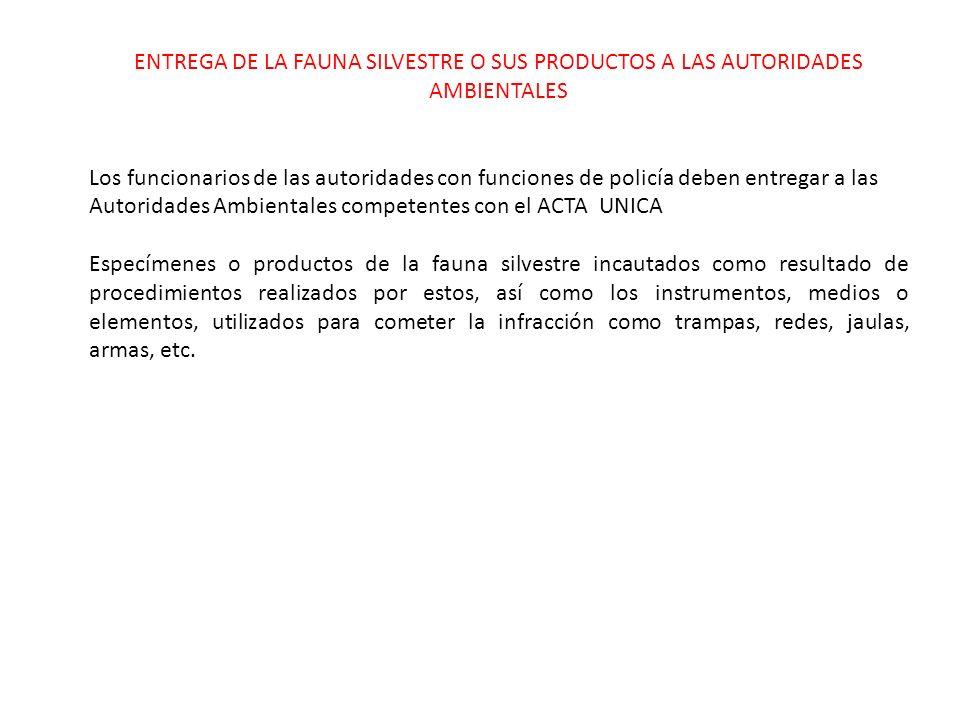 ENTREGA DE LA FAUNA SILVESTRE O SUS PRODUCTOS A LAS AUTORIDADES AMBIENTALES