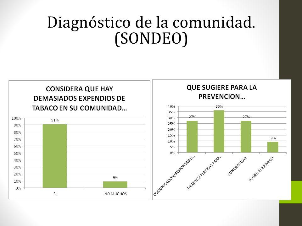 Diagnóstico de la comunidad. (SONDEO)