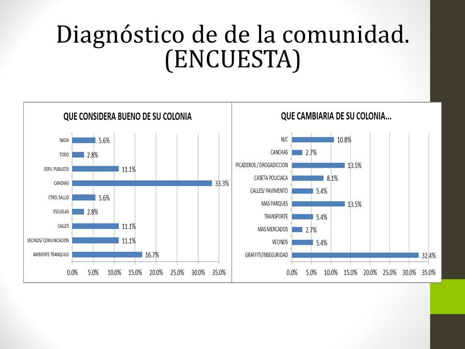 Diagnóstico de de la comunidad. (ENCUESTA)