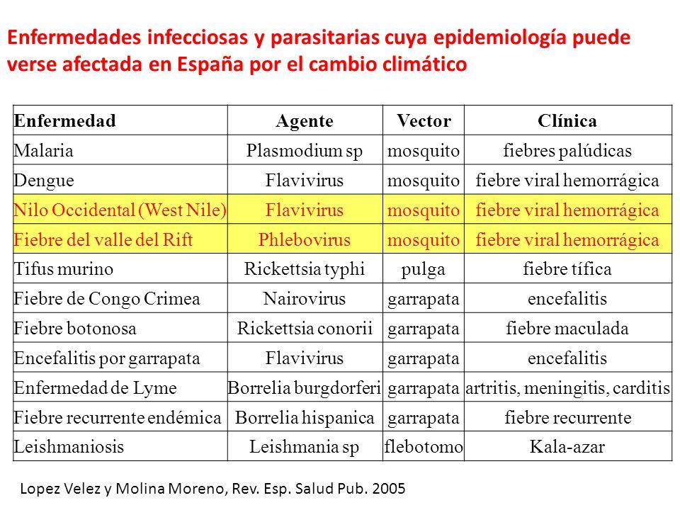 Enfermedades infecciosas y parasitarias cuya epidemiología puede verse afectada en España por el cambio climático