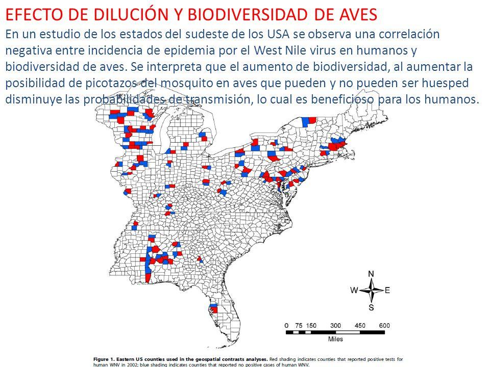 EFECTO DE DILUCIÓN Y BIODIVERSIDAD DE AVES