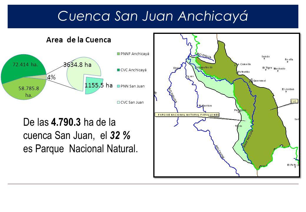 Cuenca San Juan Anchicayá