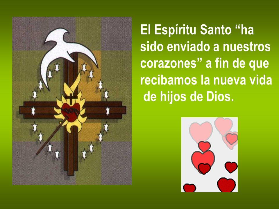 El Espíritu Santo ha sido enviado a nuestros. corazones a fin de que.