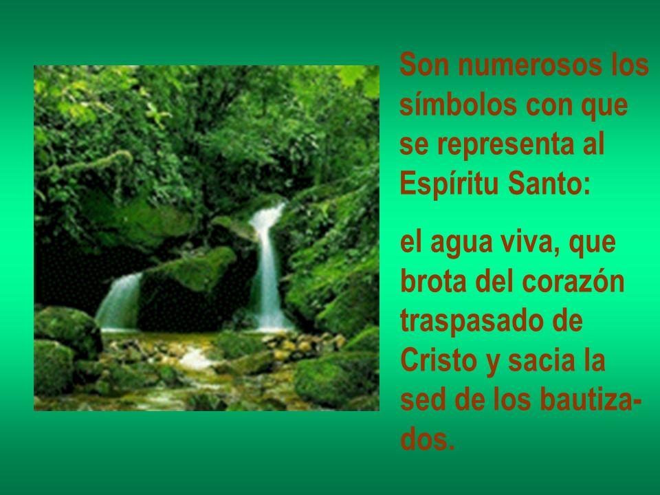 Son numerosos los símbolos con que. se representa al. Espíritu Santo: el agua viva, que. brota del corazón.