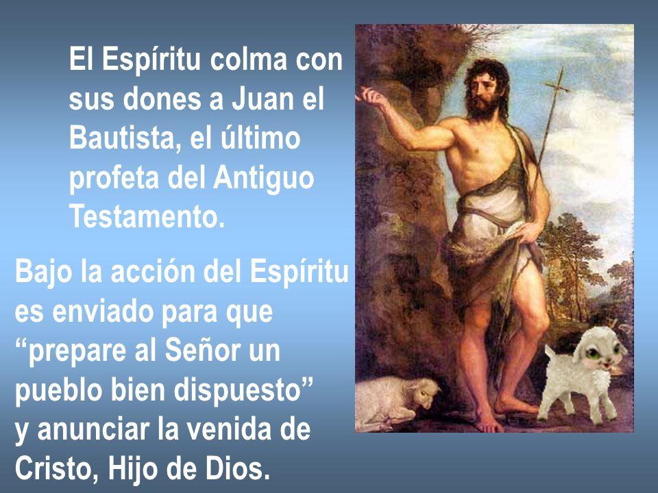 El Espíritu colma con sus dones a Juan el. Bautista, el último. profeta del Antiguo. Testamento.