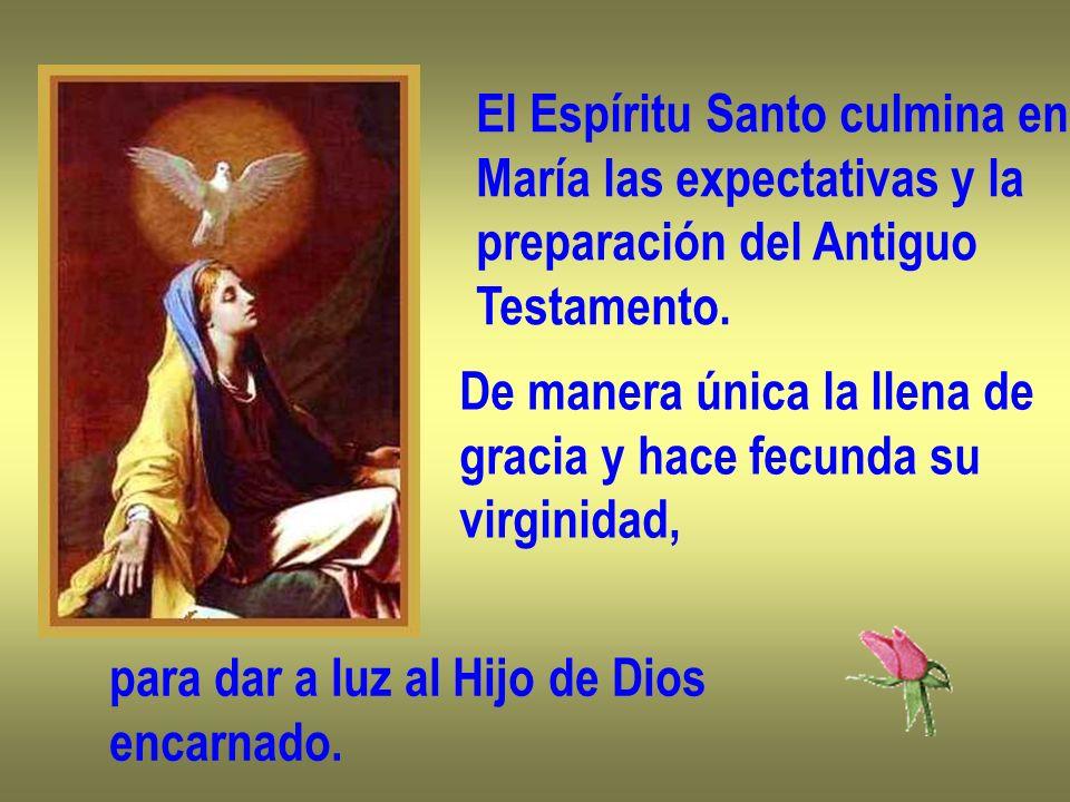El Espíritu Santo culmina en