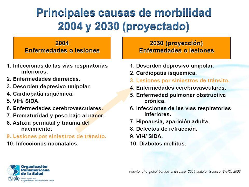 Principales causas de morbilidad 2004 y 2030 (proyectado)