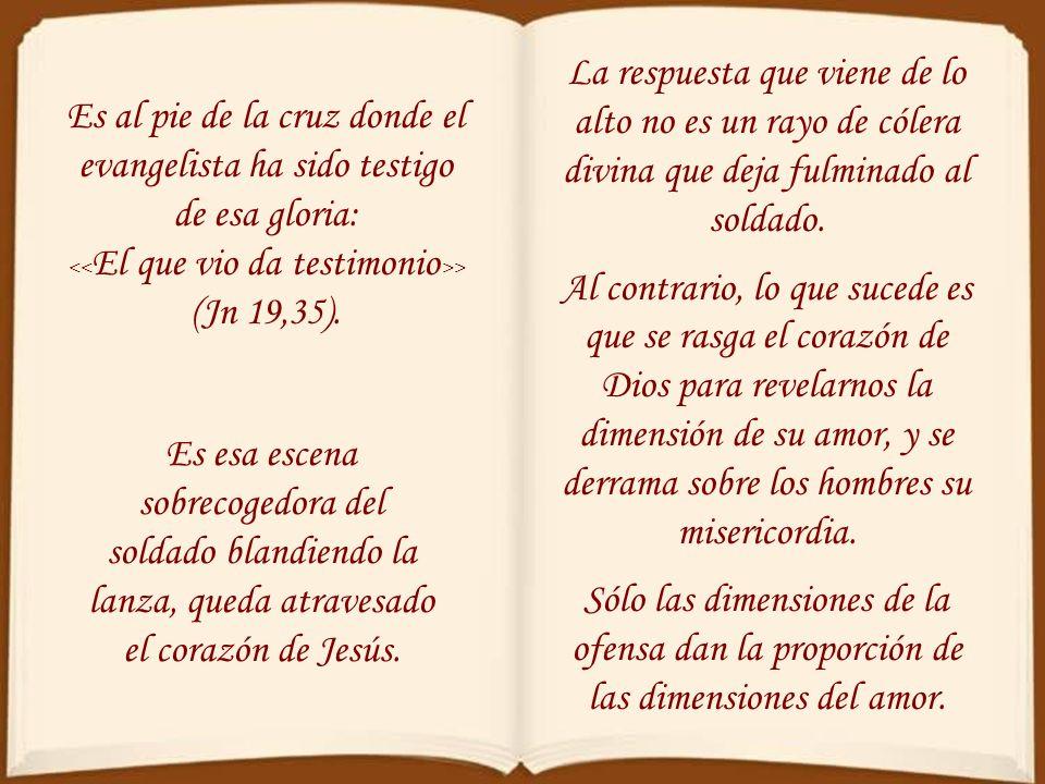 <<El que vio da testimonio>> (Jn 19,35).