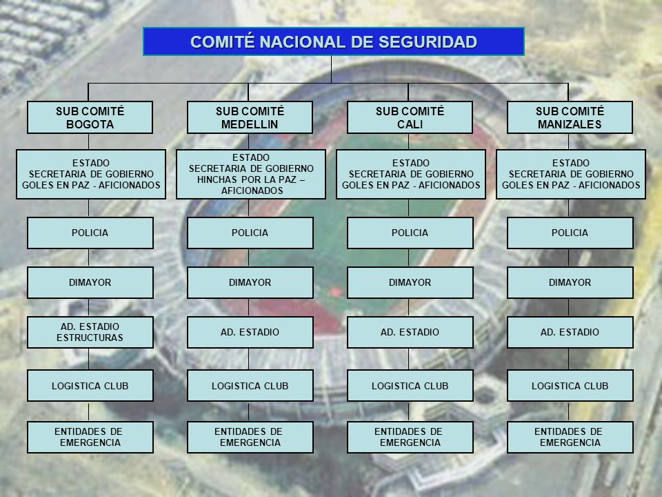 COMITÉ NACIONAL DE SEGURIDAD