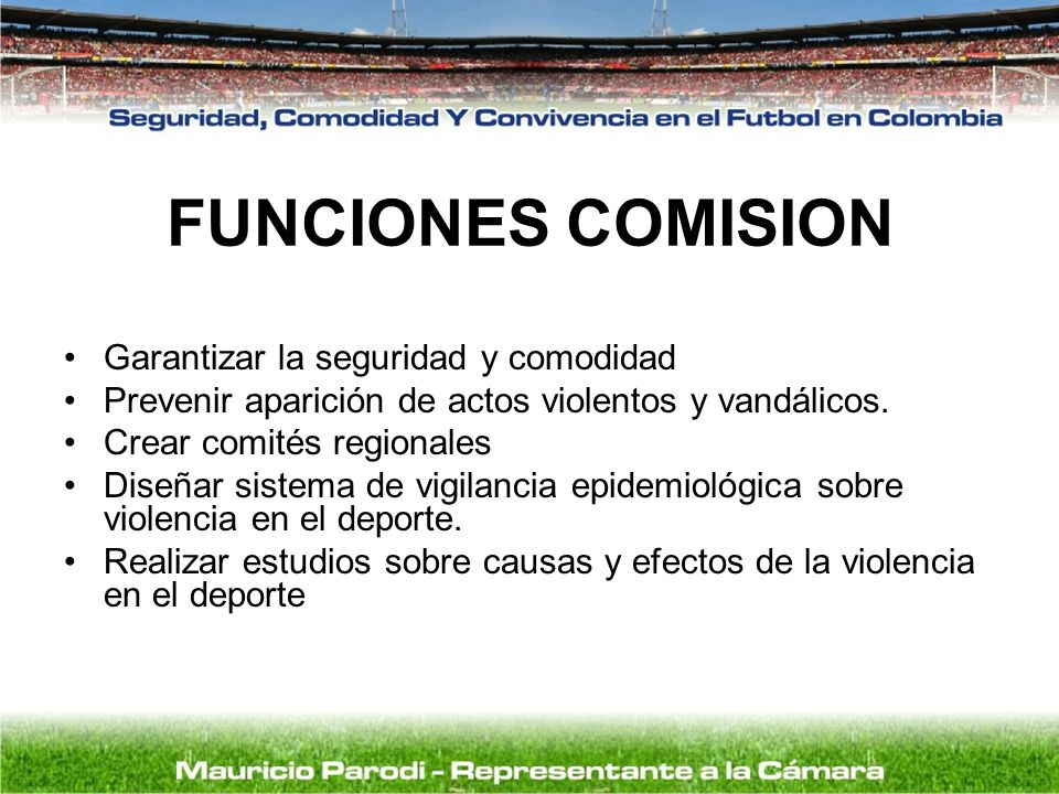 FUNCIONES COMISION Garantizar la seguridad y comodidad