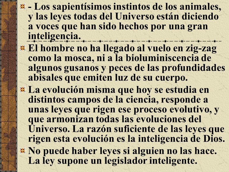 - Los sapientísimos instintos de los animales, y las leyes todas del Universo están diciendo a voces que han sido hechos por una gran inteligencia.
