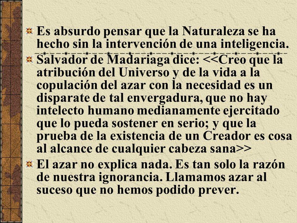 Es absurdo pensar que la Naturaleza se ha hecho sin la intervención de una inteligencia.