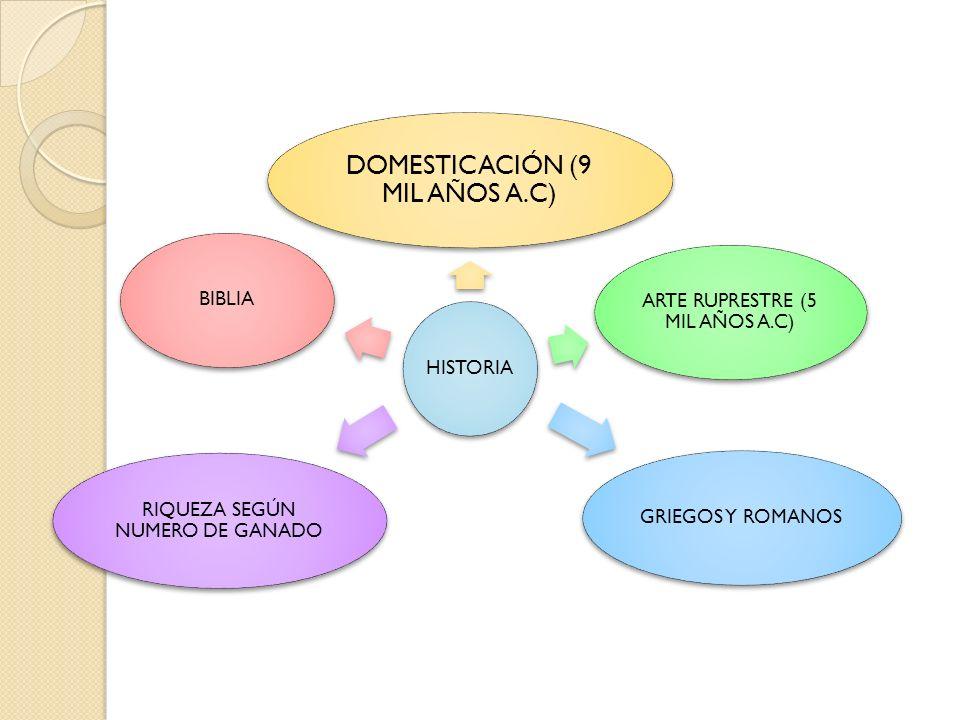 DOMESTICACIÓN (9 MIL AÑOS A.C)