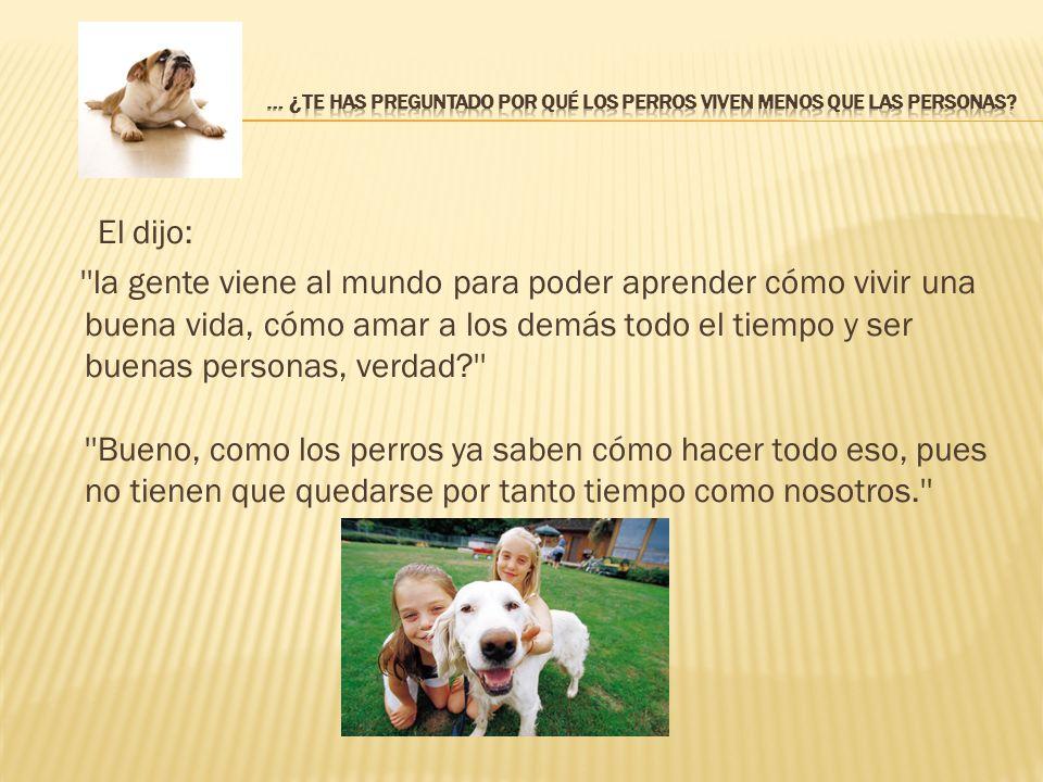 … ¿Te has preguntado por qué los perros viven menos que las personas