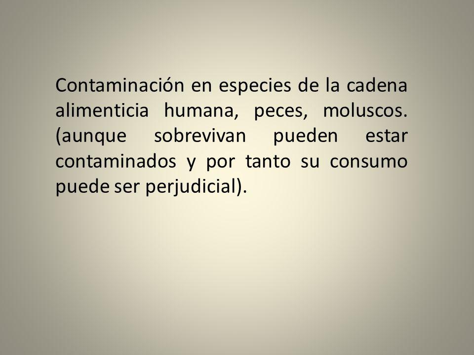 Contaminación en especies de la cadena alimenticia humana, peces, moluscos.