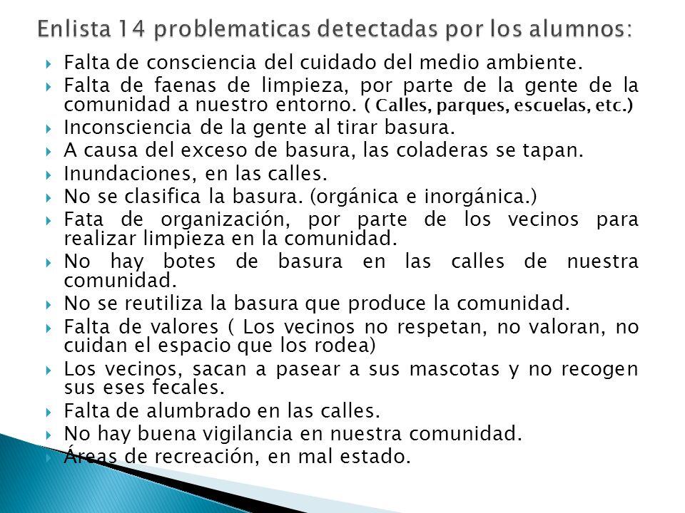 Enlista 14 problematicas detectadas por los alumnos: