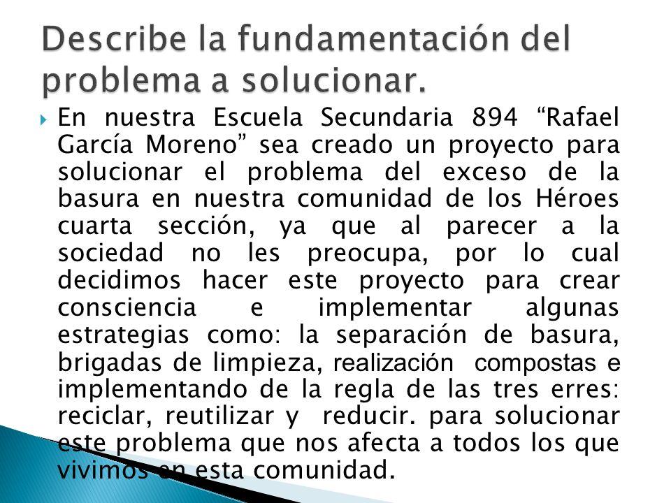 Describe la fundamentación del problema a solucionar.