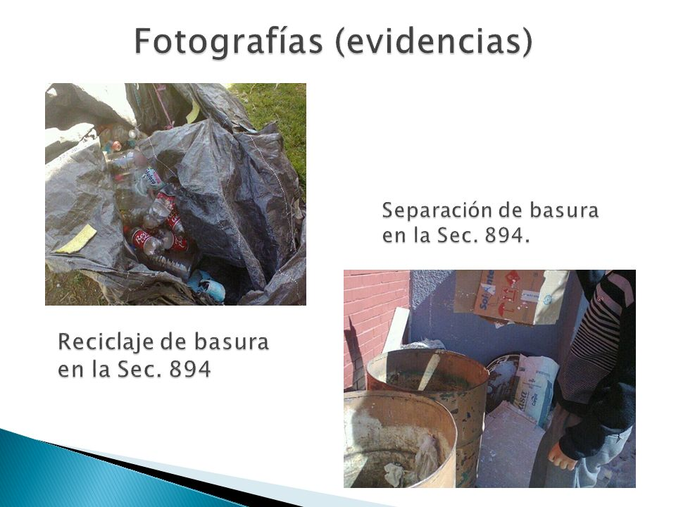 Fotografías (evidencias)