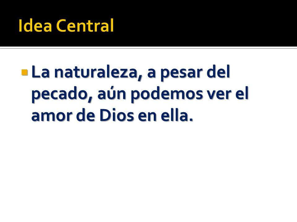 Idea Central La naturaleza, a pesar del pecado, aún podemos ver el amor de Dios en ella.