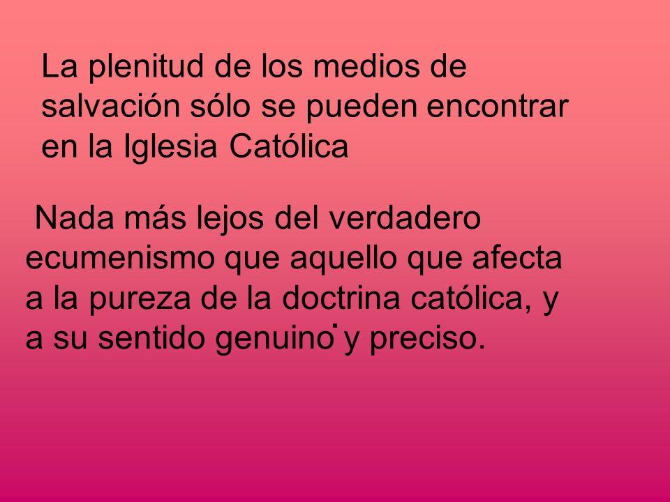 La plenitud de los medios de salvación sólo se pueden encontrar en la Iglesia Católica