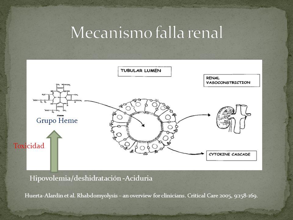 Mecanismo falla renal Grupo Heme Toxicidad
