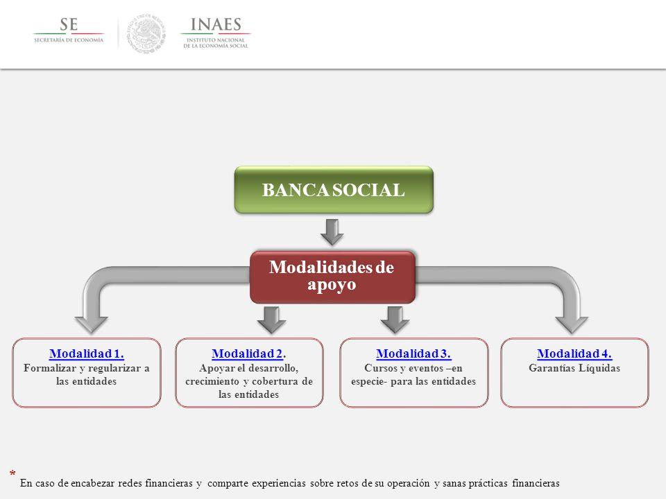 BANCA SOCIAL Modalidades de apoyo. Modalidad 1. Formalizar y regularizar a las entidades. Modalidad 2.