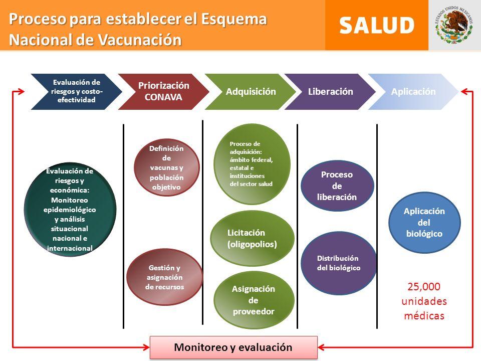 Proceso para establecer el Esquema Nacional de Vacunación