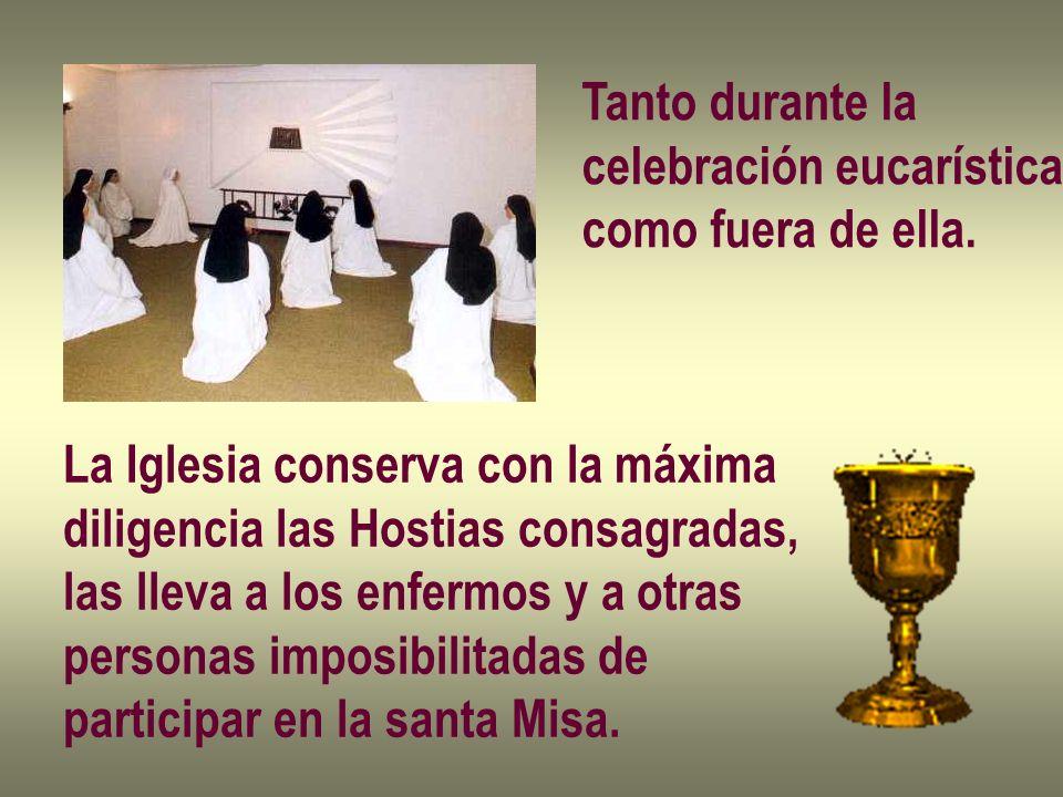 Tanto durante la celebración eucarística. como fuera de ella. La Iglesia conserva con la máxima. diligencia las Hostias consagradas,