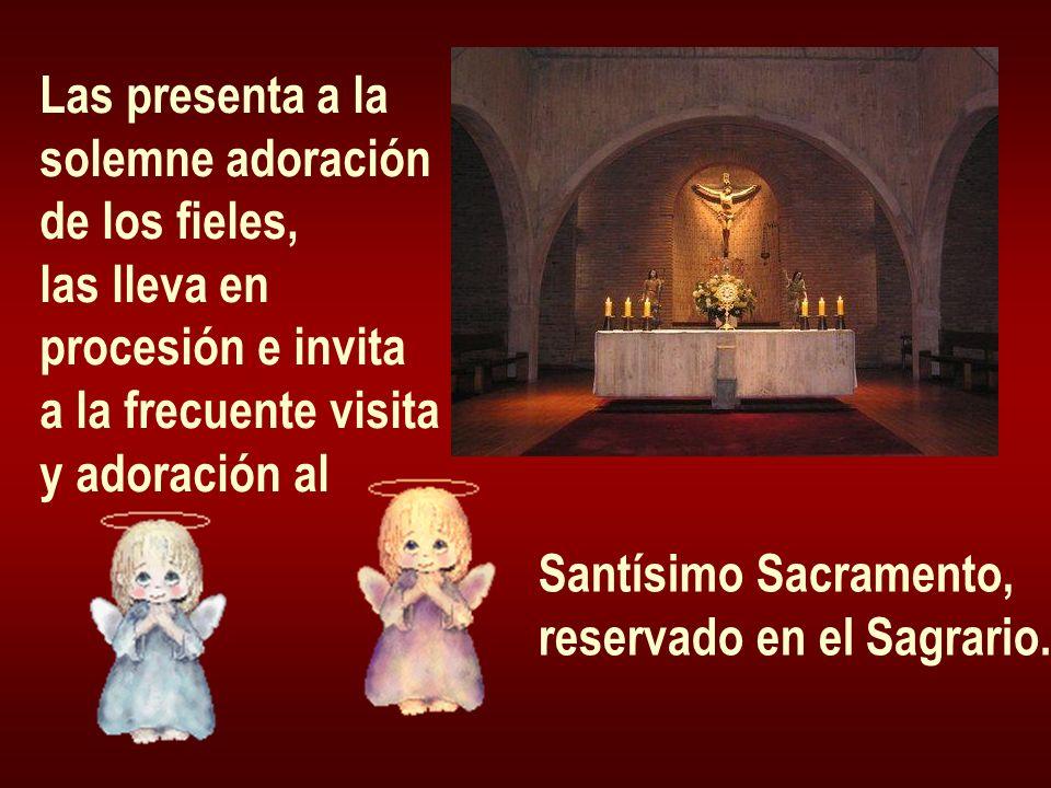 Las presenta a la solemne adoración. de los fieles, las lleva en. procesión e invita. a la frecuente visita.