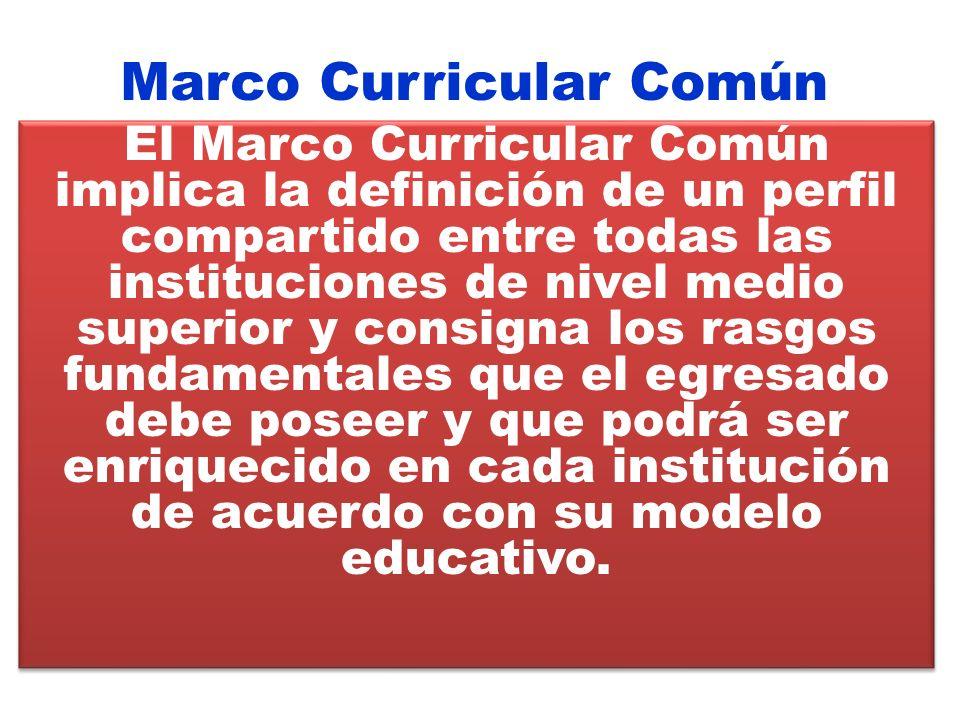 Marco Curricular Común