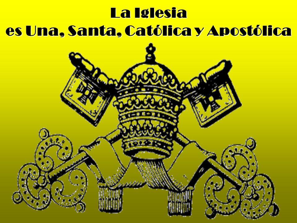 es Una, Santa, Católica y Apostólica