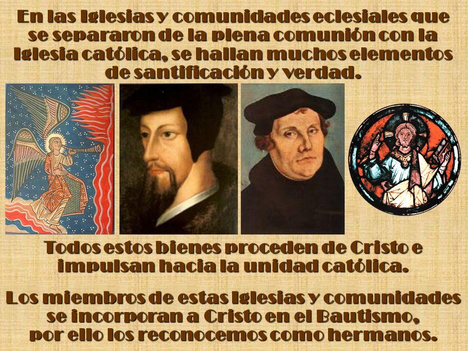 En las Iglesias y comunidades eclesiales que