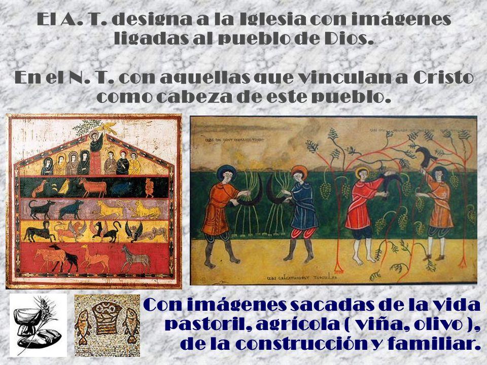 El A. T. designa a la Iglesia con imágenes ligadas al pueblo de Dios.