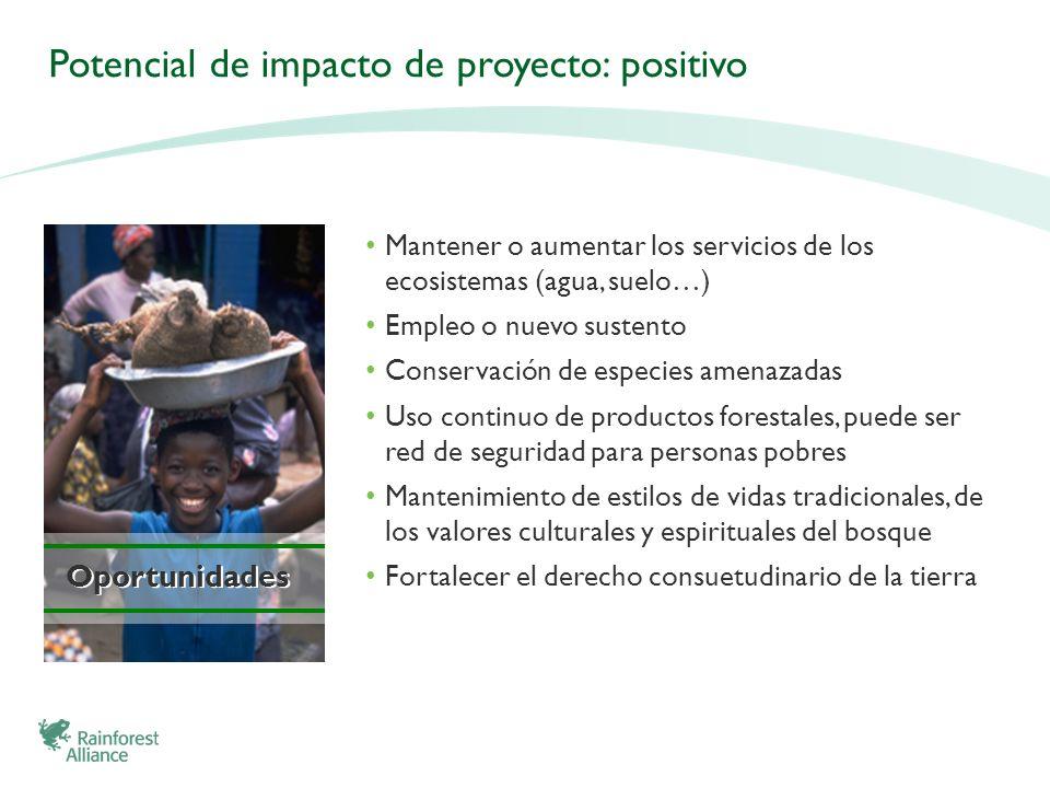 Potencial de impacto de proyecto: positivo