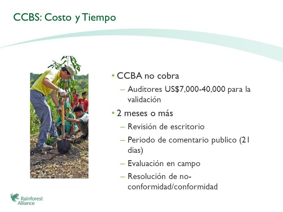 CCBS: Costo y Tiempo CCBA no cobra 2 meses o más