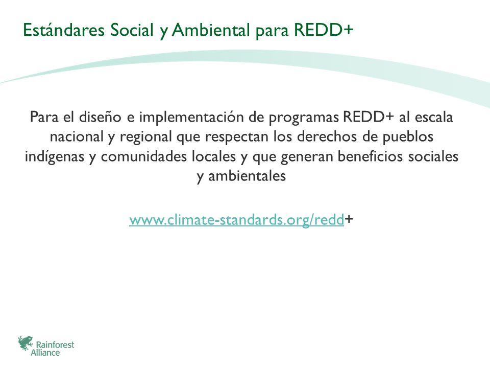 Estándares Social y Ambiental para REDD+