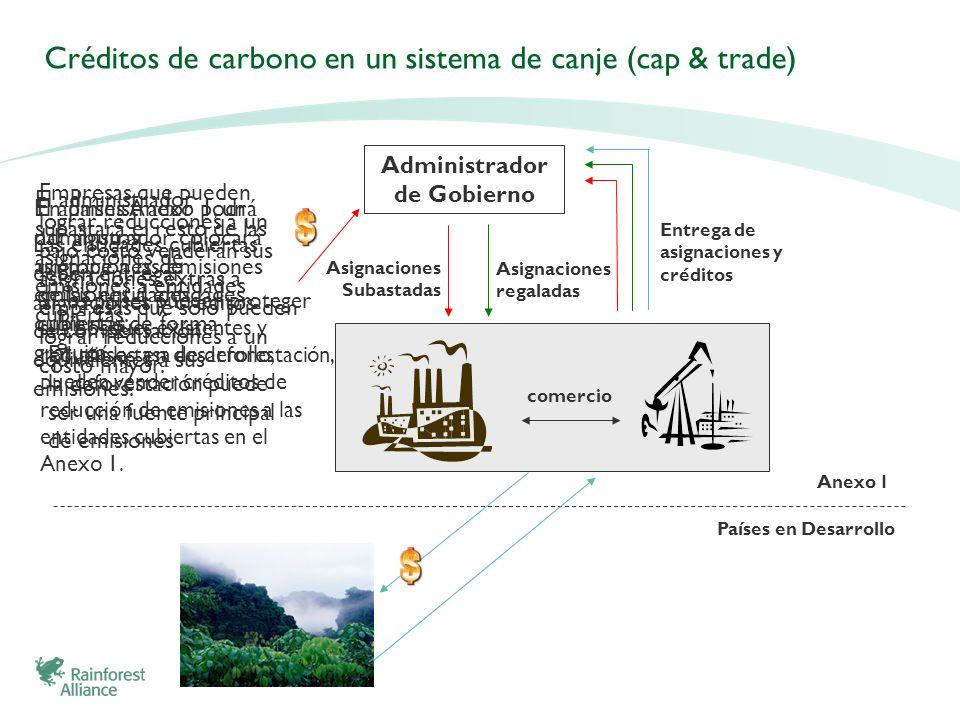 Créditos de carbono en un sistema de canje (cap & trade)