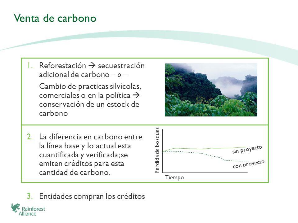 Venta de carbonoReforestación  secuestración adicional de carbono – o –