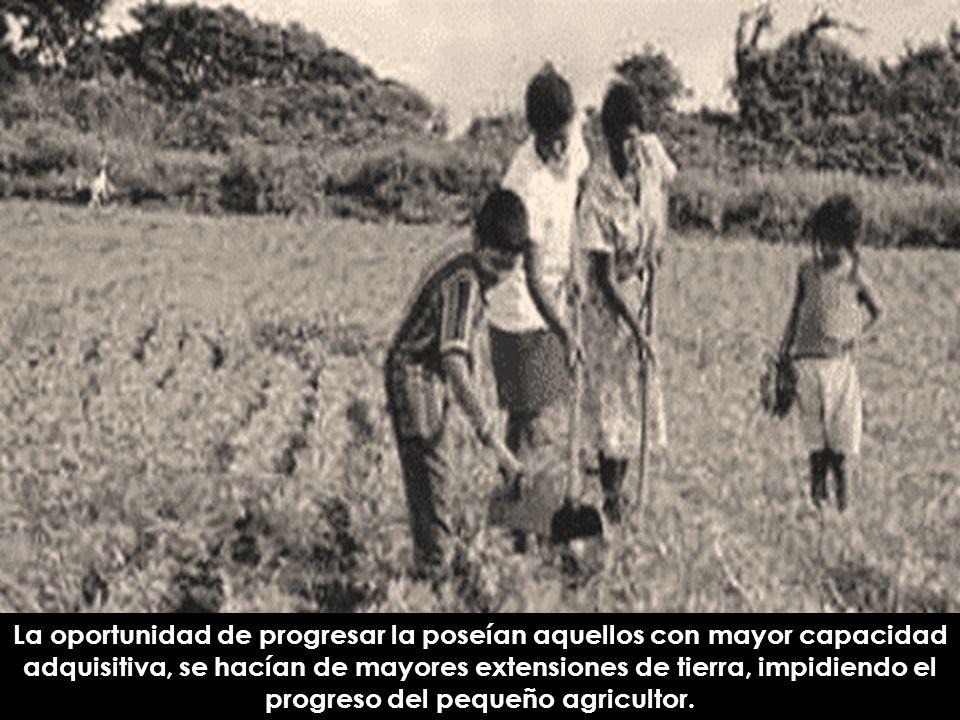 La oportunidad de progresar la poseían aquellos con mayor capacidad adquisitiva, se hacían de mayores extensiones de tierra, impidiendo el progreso del pequeño agricultor.
